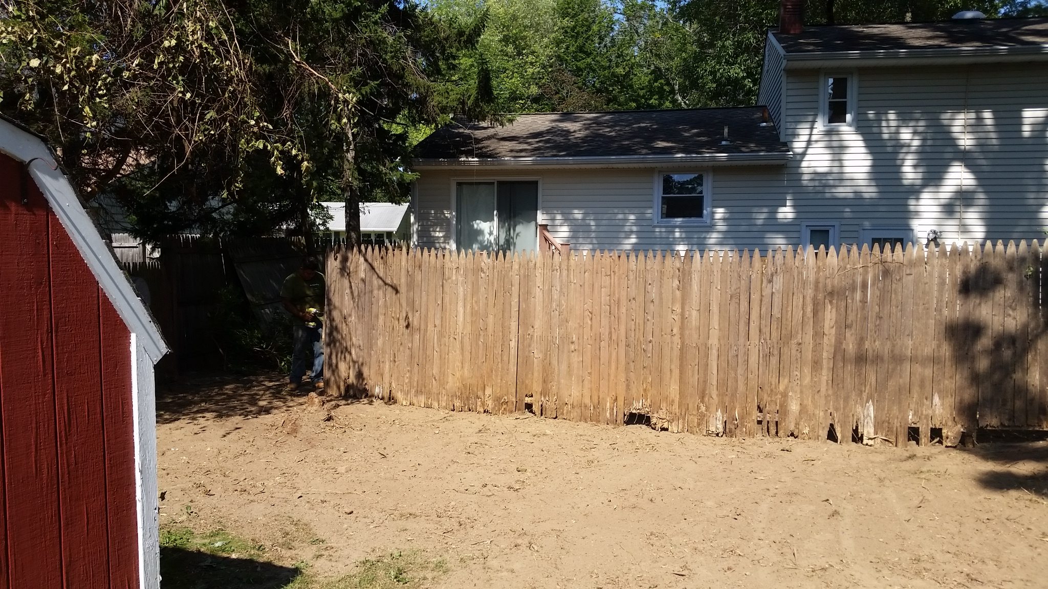 bamboo control removal Gloucester Township New Jersey