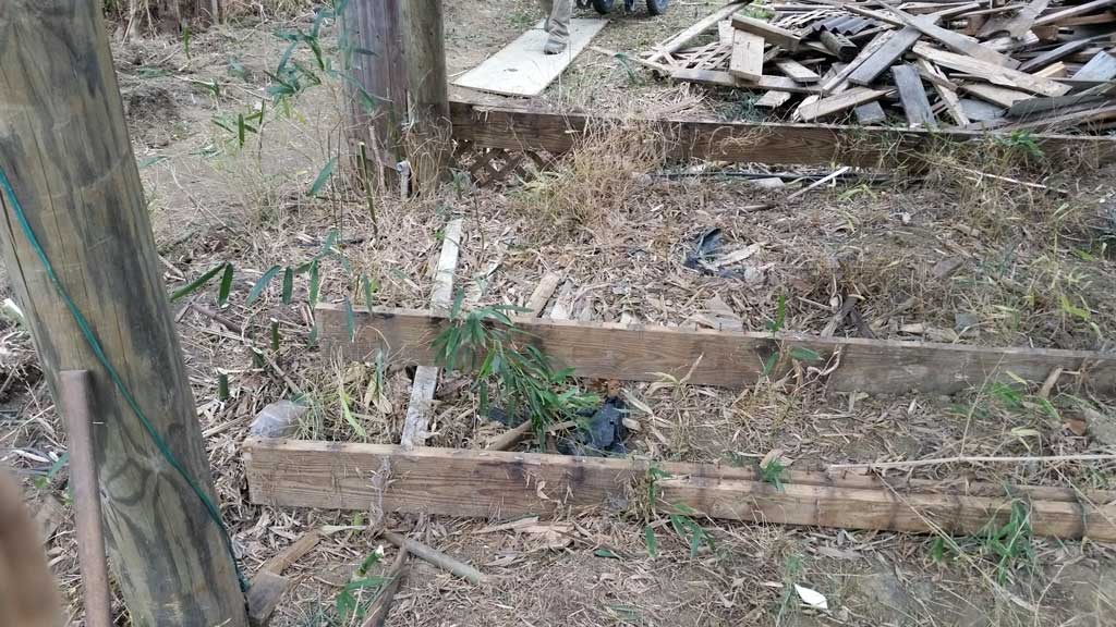 bamboo removal ordinance NJ 7
